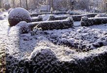 Gemüsegarten mit Buchsbaumhecke im Winter