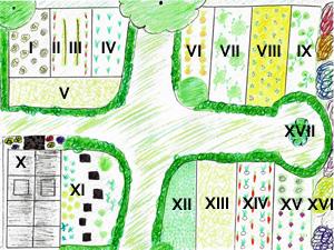 Kulturplan im Gemüsegarten