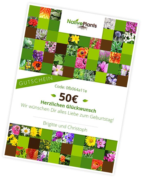 Native Plants Gutschein