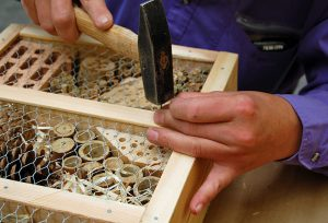 Insektenhotel-bauen
