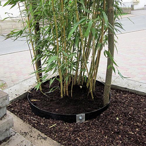 Rhizomsperre für Bambuspflanzen