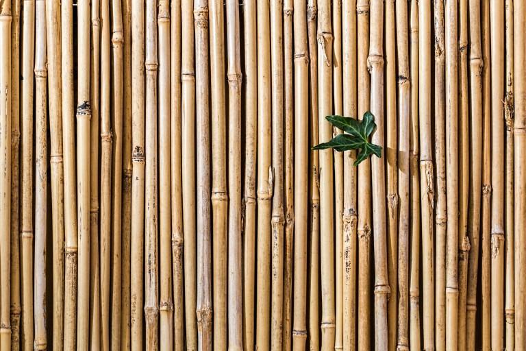 Gestalten mit Bambusstäben