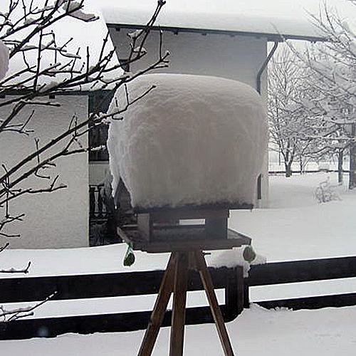 Vogelfutterhaus im Winter mit Schnee
