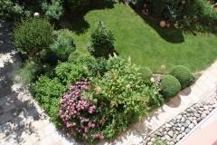 Pflanzen für den Vorgarten