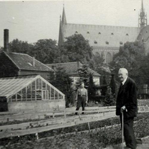 Gartenbau-Rogmans-a