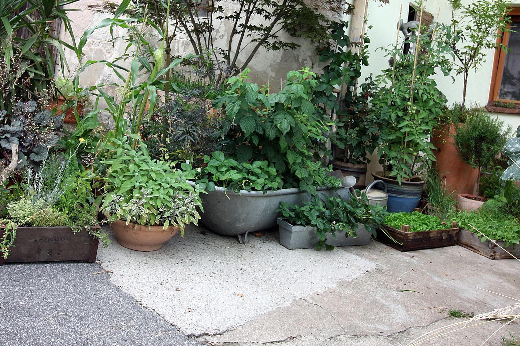 Urban-Gardening-drei