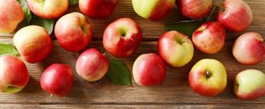 Apfelbäume für Garten und Balkon