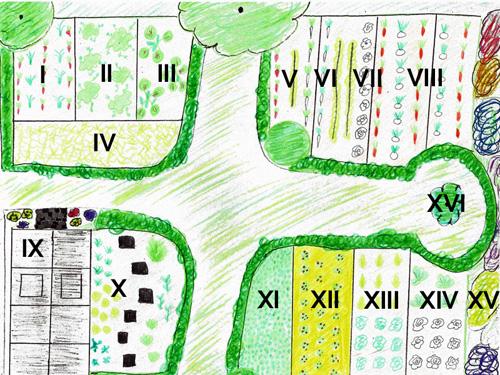 unser gemüsegarten | native plants - Gemusegarten Anlegen Pflanzplan