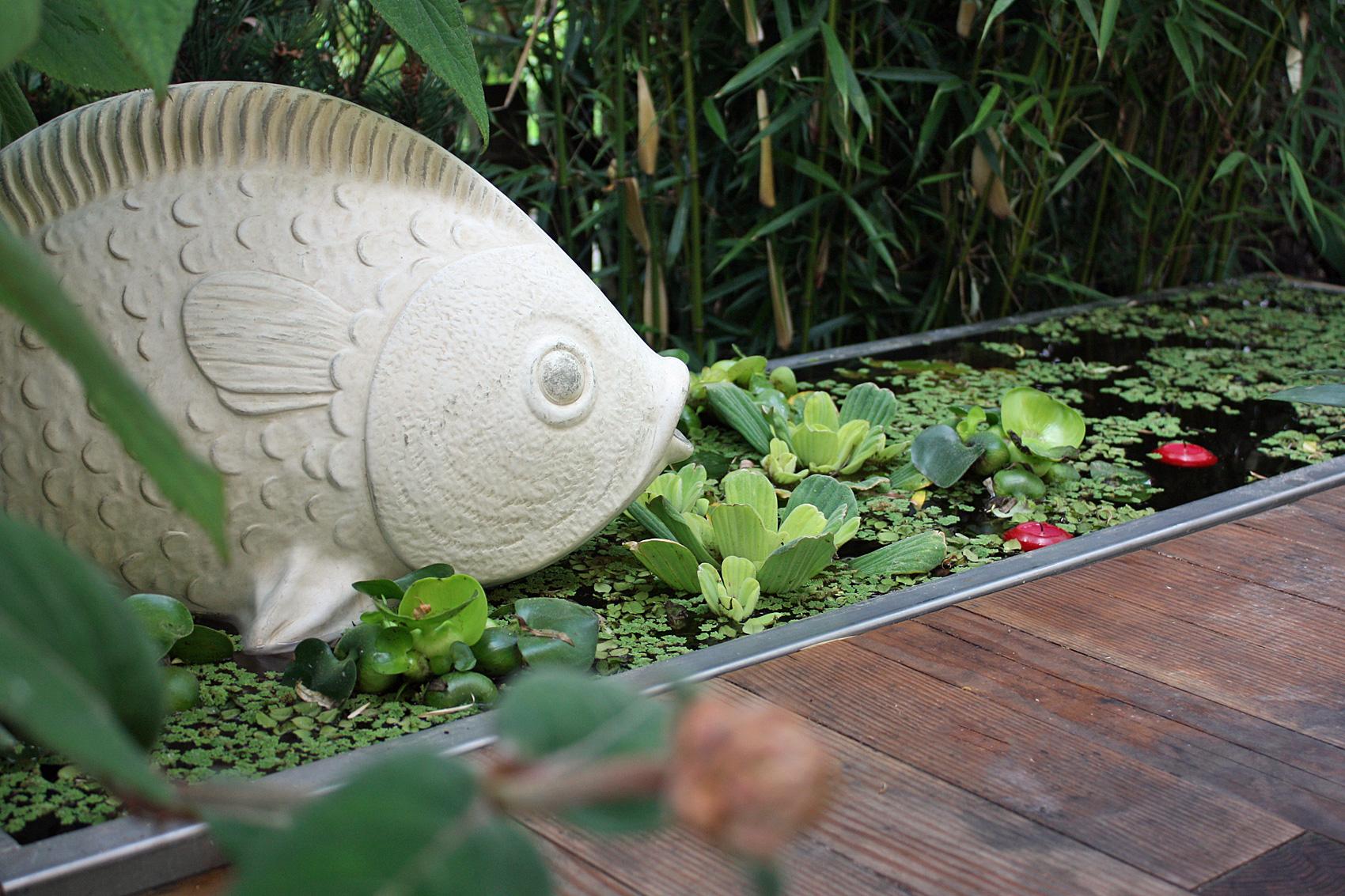 Wassergarten-drei