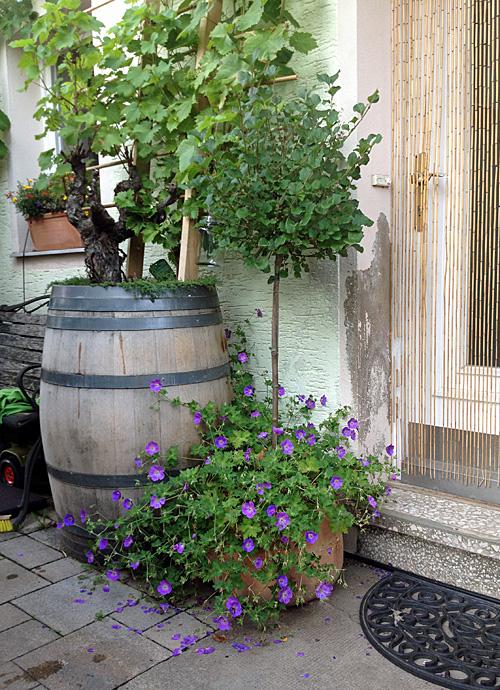 Weinfass als Pflanzkübel