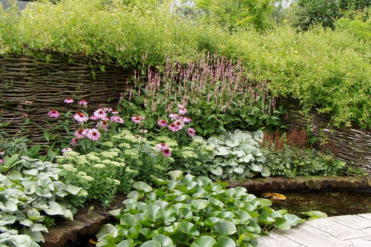 Blumenbeete und Rabatten