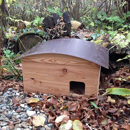 Igelhaus im Garten aufstellen