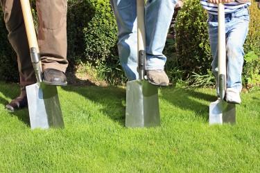 Pflanz- und Pflegeanleitungen für unsere verschiedenen Pflanzen
