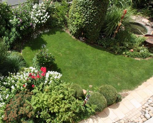 Zierrasen im Vorgarten