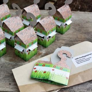 Florfliegenlarven in Buchweizen plus 15 BioBoxen