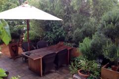 Unsere Lieblinge für kleine Gärten