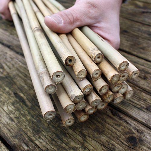 bambusst be bambusstangen 152 cm lang 10 12 mm dick ebay. Black Bedroom Furniture Sets. Home Design Ideas